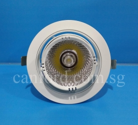 DL 235 WH COB30W LED (1)